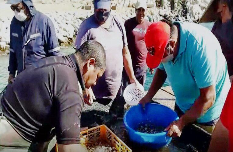 Acuymin operará Primer Centro de Capacitación para pescadores y buzos de la zona norte