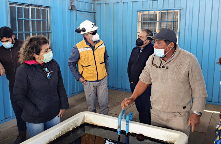 Alcalde de Mejillones evalúa replicar Centro Acuícola Acuymin con pescadores artesanales locales